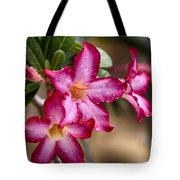 The Wet Of The Rain V3 Tote Bag