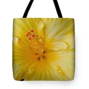 The Whispers Of Heaven  Tote Bag