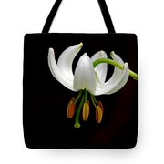 The White Form Of Lilium Martagon Named Album Tote Bag