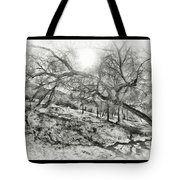 The Wicked Trees Tote Bag