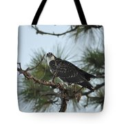 The Wild Osprey Tote Bag