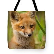 The Wild Pup Tote Bag
