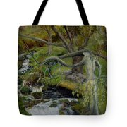 The Willow Woman Washing Her Hair Tote Bag