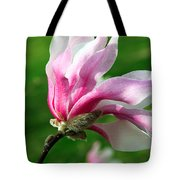 The Windblown Pink Magnolia 1 - Flora - Tree - Spring - Garden Tote Bag