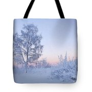 The Winter Light Tote Bag