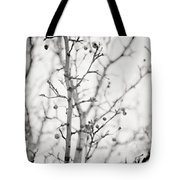 The Winter Pear Tree In Black And White Tote Bag