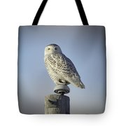 The Wise Snowy Owl Tote Bag