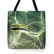 The Wishing Fish Tote Bag