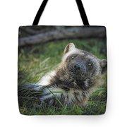 The Wolverine Skunk Bear Happy Face Tote Bag
