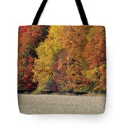The Wonder Of Fall Tote Bag