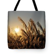 The Wonder Of The Setting Sun Tote Bag