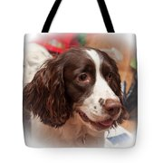The Wonders Of Christmas Tote Bag