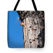The Woodpecker Is In Tote Bag