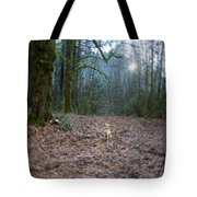 The World She Lives In Tote Bag