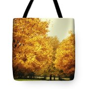Then The Morning Comes 07 Tote Bag