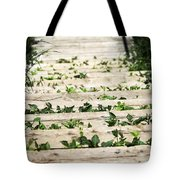 There Is No Stopping Nature Tote Bag