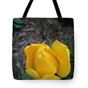 There Tote Bag