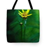 There's A Secret World Tote Bag