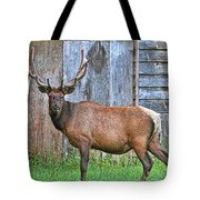There's An Elk By The Barn Tote Bag