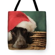 These Are All For Santa Tote Bag