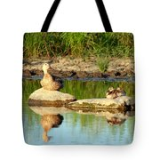 These Ducks Rock Tote Bag