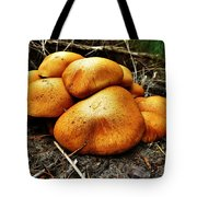 These Look Almost Animal  Tote Bag