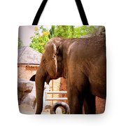 They All Ask'd For You Tote Bag