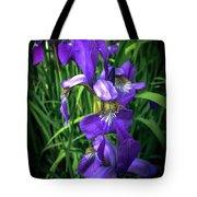 Colors Of Iris Tote Bag