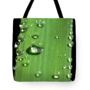They Never Let Poor Rain Drop Join In Any Rain Drop Games Tote Bag
