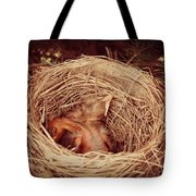 They've Hatched Tote Bag