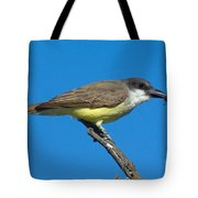 Thick-billed Kingbird Tyrannus Tote Bag