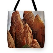 Thick Fins Tote Bag