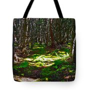 Thicket-like Woods And Spongy Moss Near Lobster Cove In Gros Mor Tote Bag