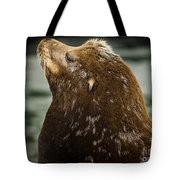 Things Are Looking Up-sealion Tote Bag
