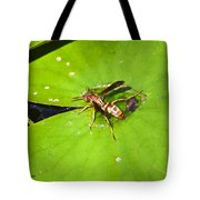 Thirsty Bee On Waterlily Tote Bag