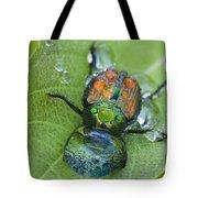 Thirsty Beetle Tote Bag