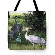 Thirsty Cranes Tote Bag