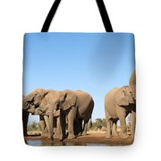 Thirsty Elephant Herd Tote Bag