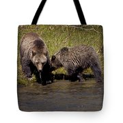 Thirsty Grizzlies  #3418 Tote Bag