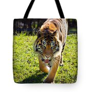 Thirsty Tiger Tote Bag