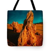 This Land Is Ours Tote Bag