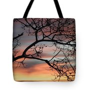 This Side Of The Night Tote Bag