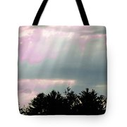 This Too Shall Pass 2 Tote Bag