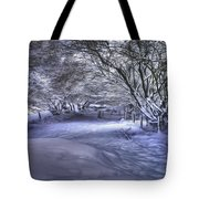 This Way To Fairy Glen Tote Bag