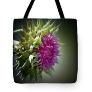 Thistle 14-3 Tote Bag