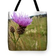 Thistle In A Swiss Field Tote Bag