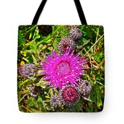 Thistle In Saint Mary's Ecological Reserve-newfoundland Tote Bag