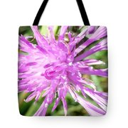 Thistle In Umbria Tote Bag