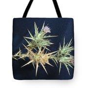 Thistle Of Israel Tote Bag