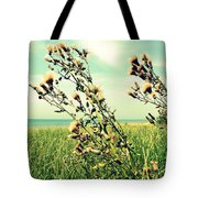 Thistle On The Beach  Tote Bag